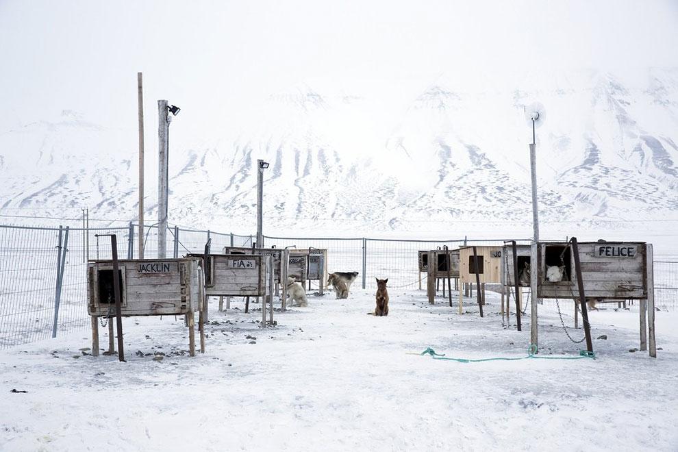 острова Арктики, буря в Арктике, остров Шпицберген, на краю света, архипелаг, фото № 8