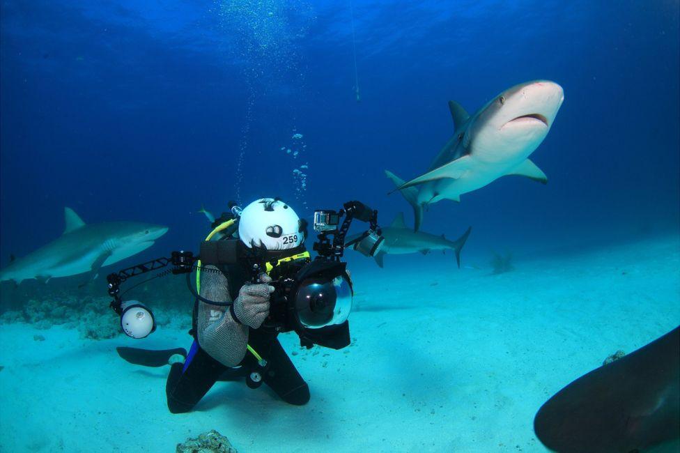 подводный фотоаппарат, фотоаппарат для подводной съемки, съемка под водой-4