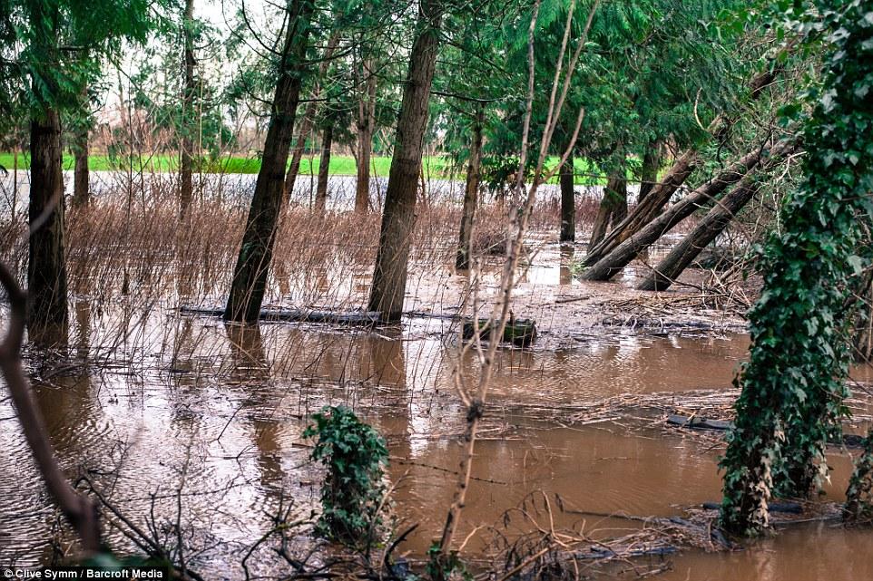 шторм в Великобритании, ураган, Корниш, фото № 17