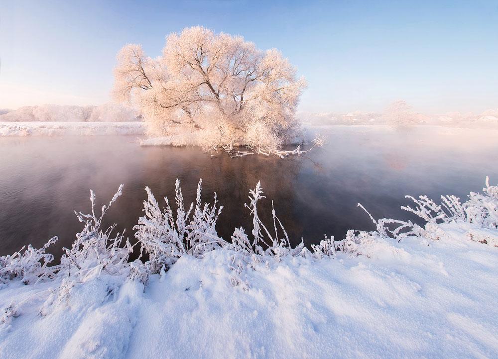 зимняя природа фото, иней фото, природа Беларуси-1