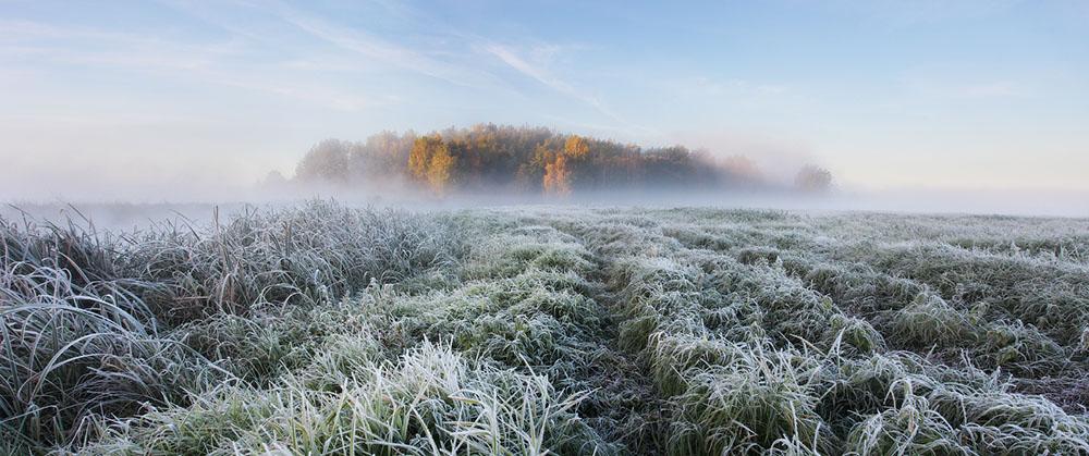 зимняя природа фото, иней фото, природа Беларуси-4