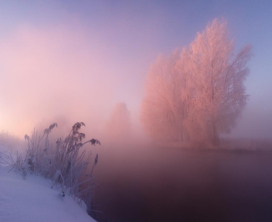зимняя природа фото, иней фото, природа Беларуси-5
