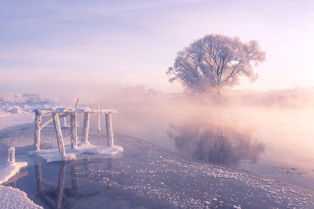 зимняя природа фото, иней фото, природа Беларуси-8