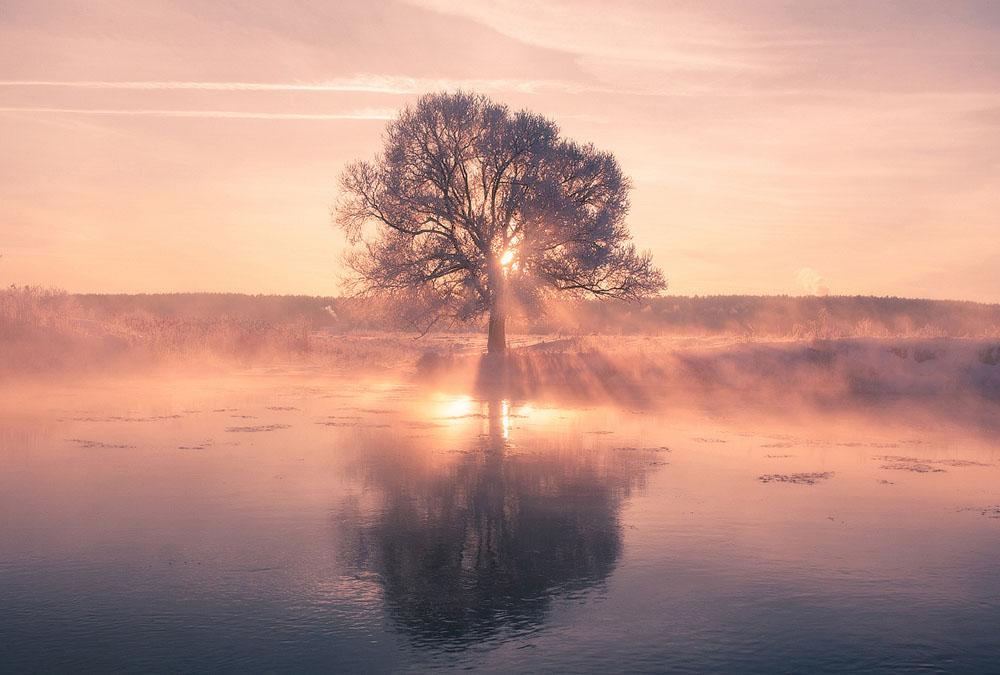 зимняя природа фото, иней фото, природа Беларуси-9