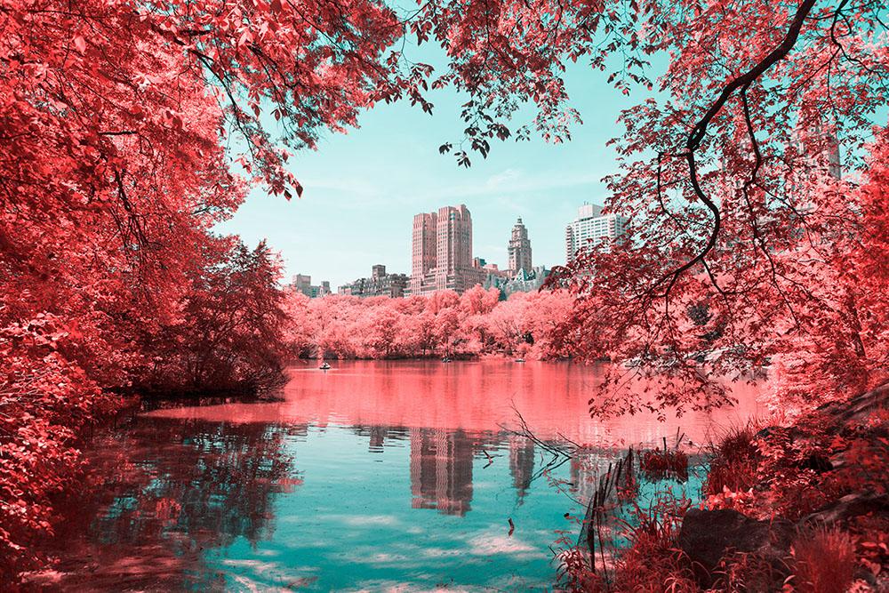 Центральный Парк Нью Йорка в инфракрасном свете
