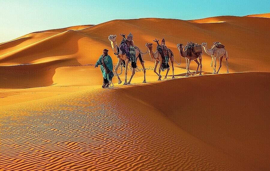 Караваны, пустыня Сахара