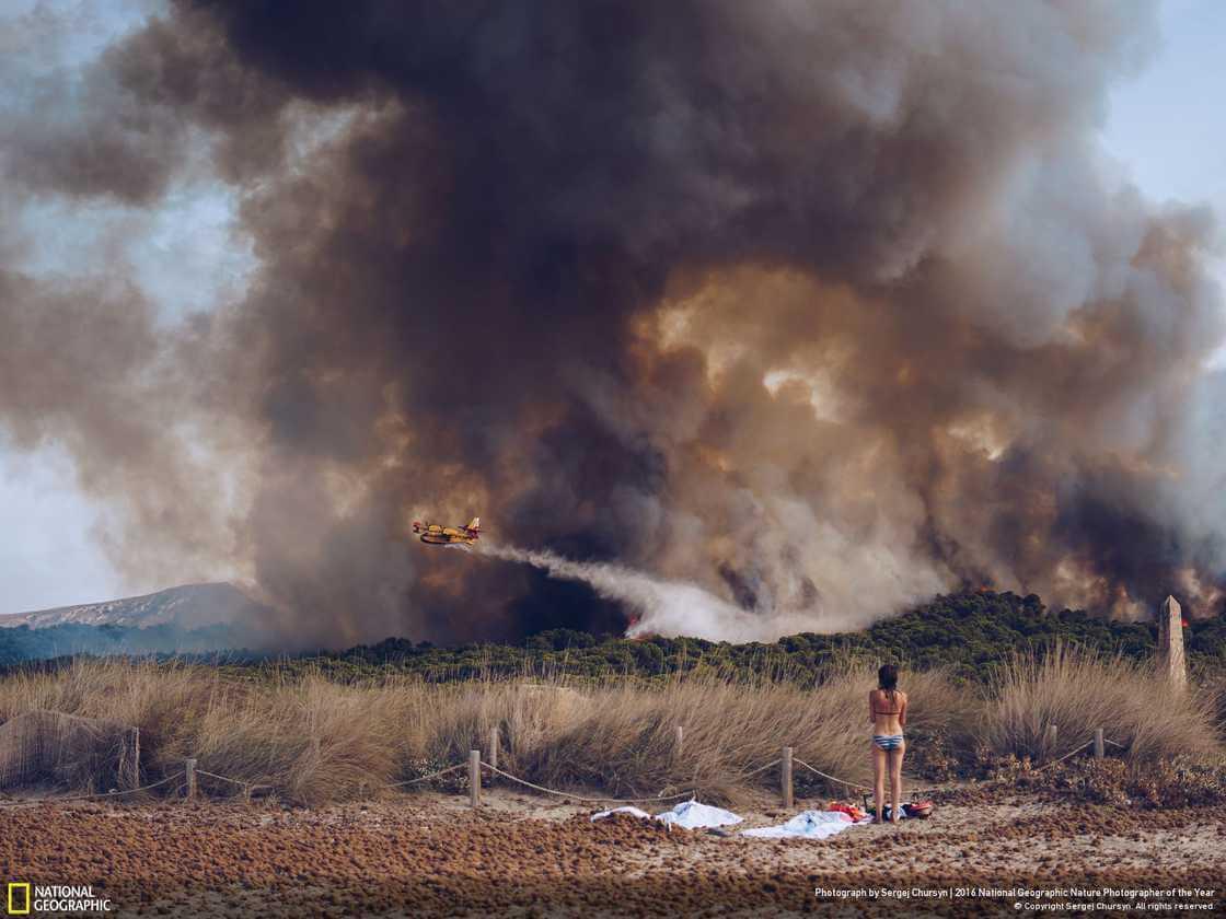 Тушение лесного пожара на пляже в Майорке, Испания