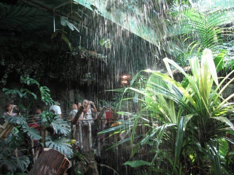 период дождя Африканского континента