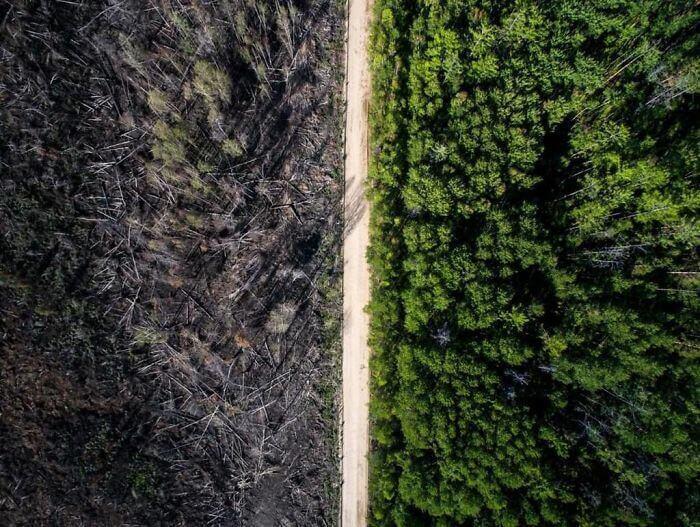 Дорога, остановившая пожар