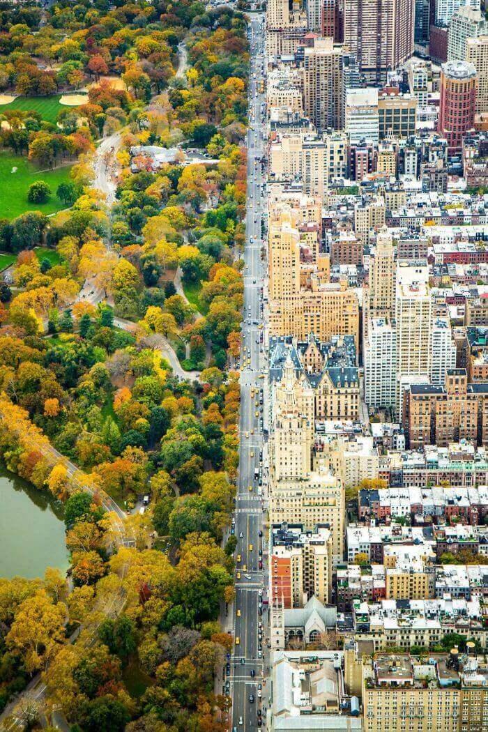 Разделение двух миров в Нью-Йорке: городская архитектура и зелень Центрального парка
