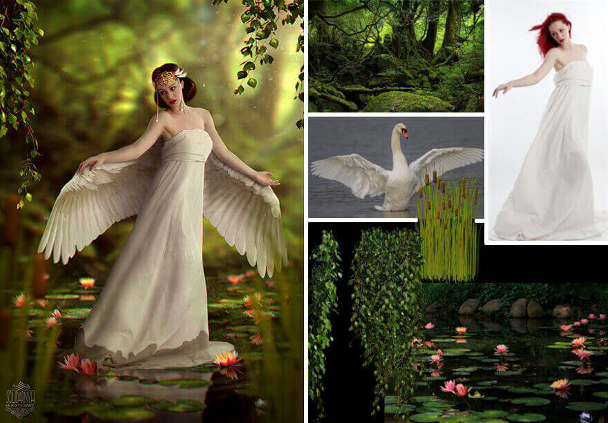 Принцесса-Лебедь - Photoshop