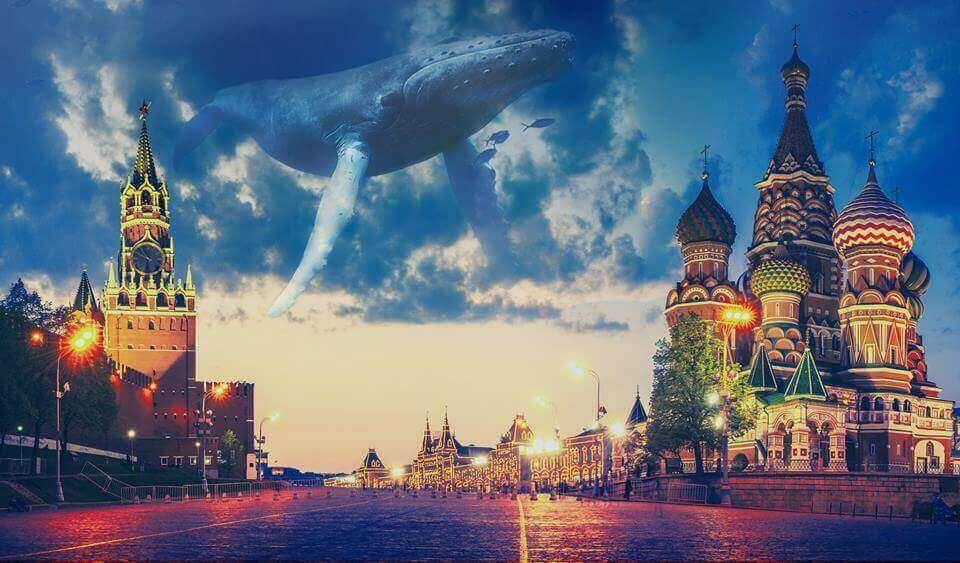 Кит проплывает в небе над Москвой