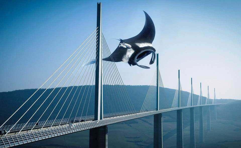 Скат над мостом