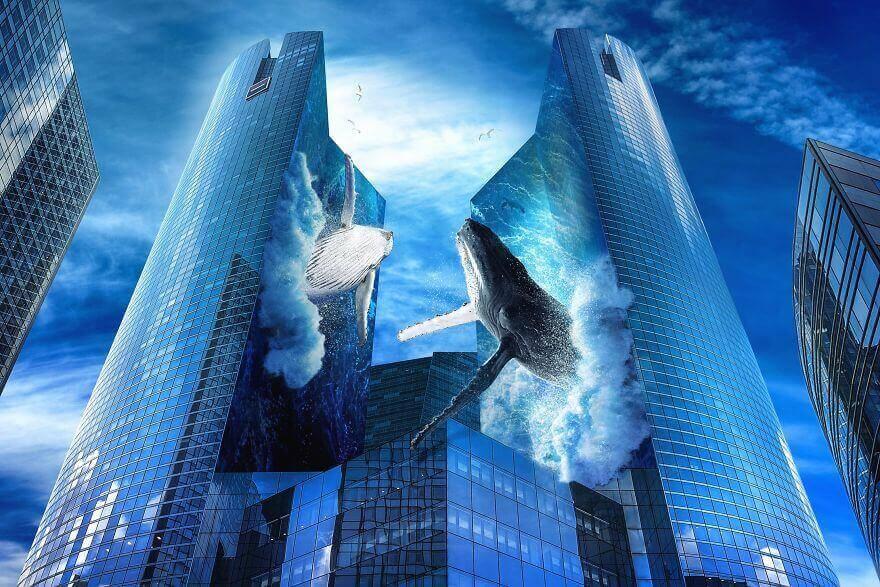 два кита между небоскребами