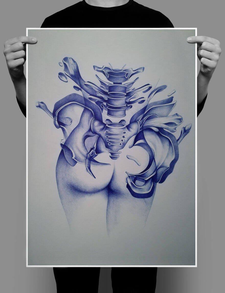 Анатомия 2, рисунок шариковой ручкой