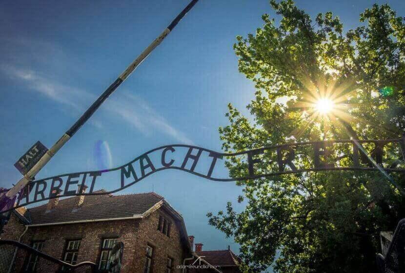 Освенцим в цвете