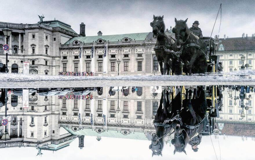 города в отражении лужи,Вена, Австрия