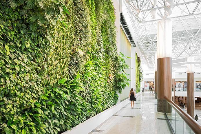 Зеленые стены, фото 1