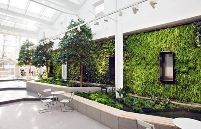 Зеленые стены, фото 2
