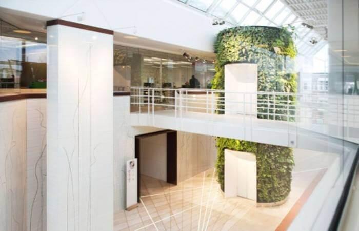 Зеленые стены, фото 3