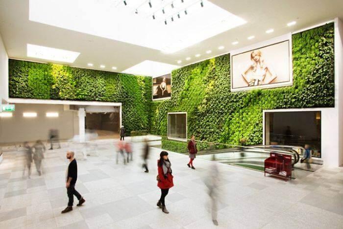 Зеленые стены, фото 4