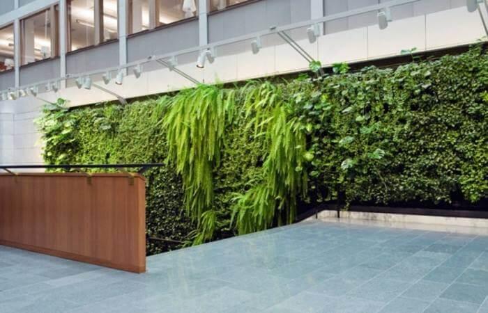 Зеленые стены, фото 5