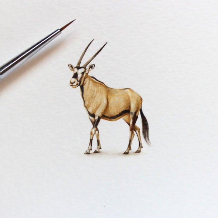 Акварельные миниатюры, фото 22
