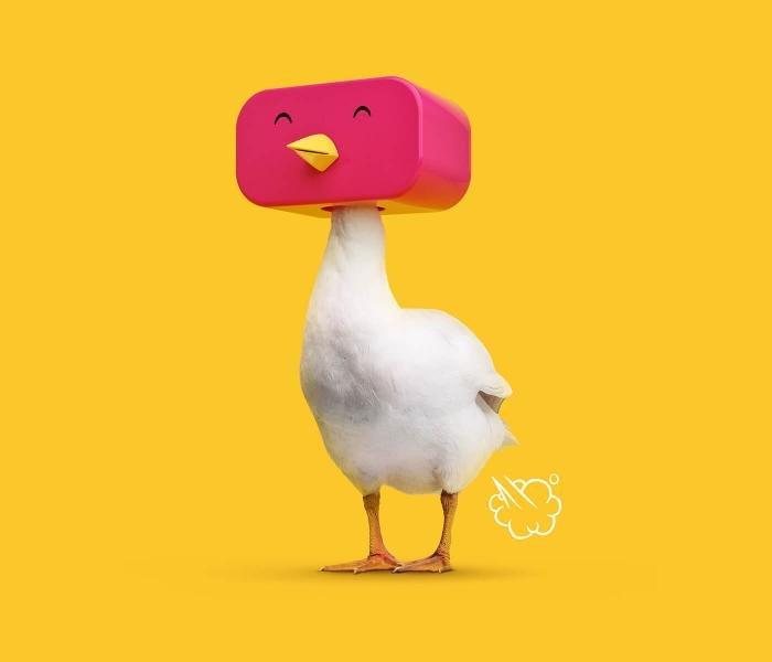 «Графический маскарад» от студии FOREAL – необычный проект о животных