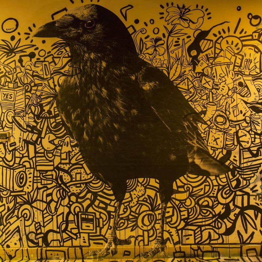 художники разрисовали стены студенческого общежития, фото 13