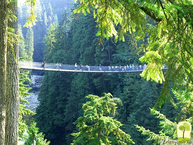 Самые красивые подвесные мосты в мире, фото 7