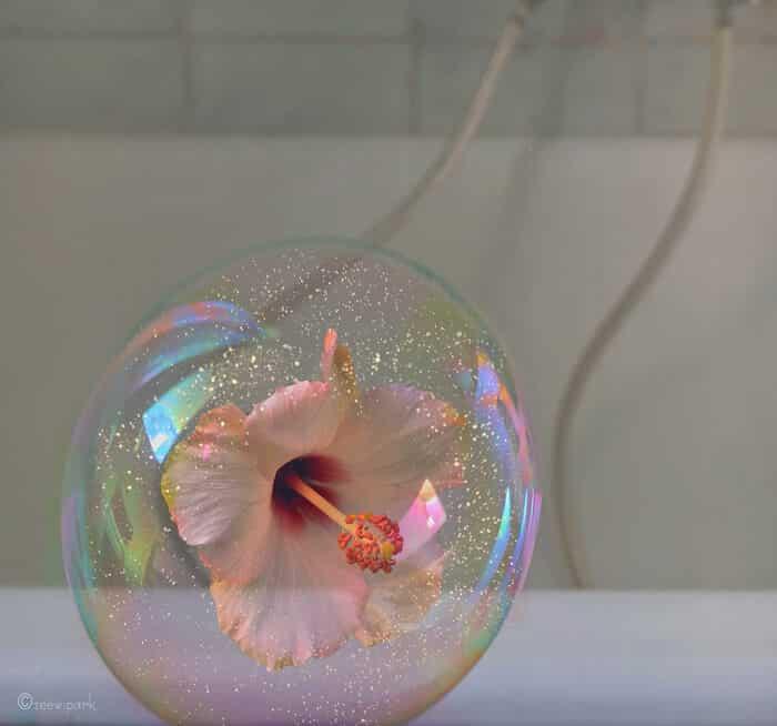 совмещение мыльных пузырей и цветов, фото 11