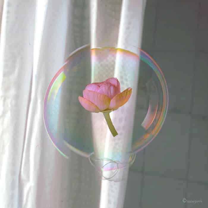 совмещение мыльных пузырей и цветов, фото 12