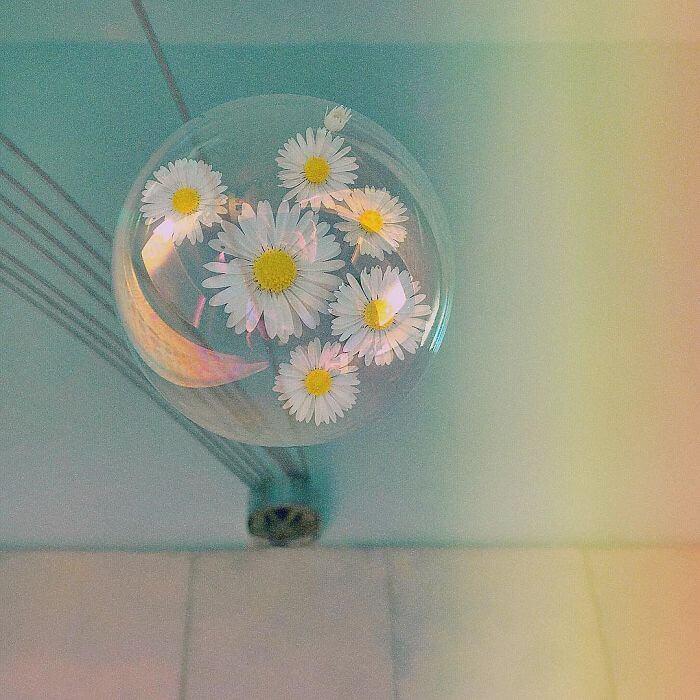 совмещение мыльных пузырей и цветов, фото 19