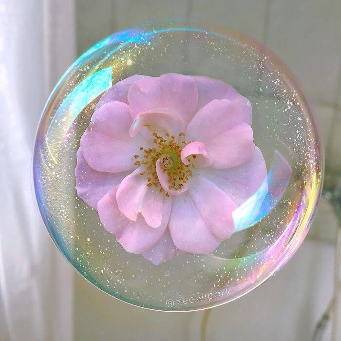 совмещение мыльных пузырей и цветов, фото 8