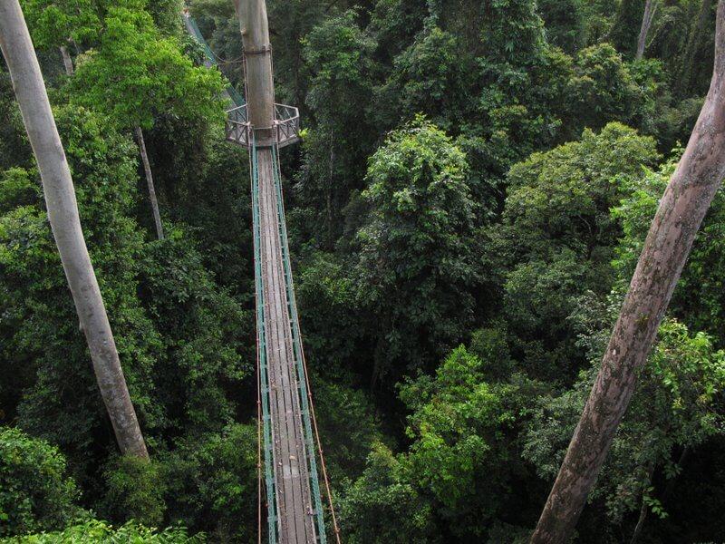 Самые красивые подвесные мосты в мире, фото 6