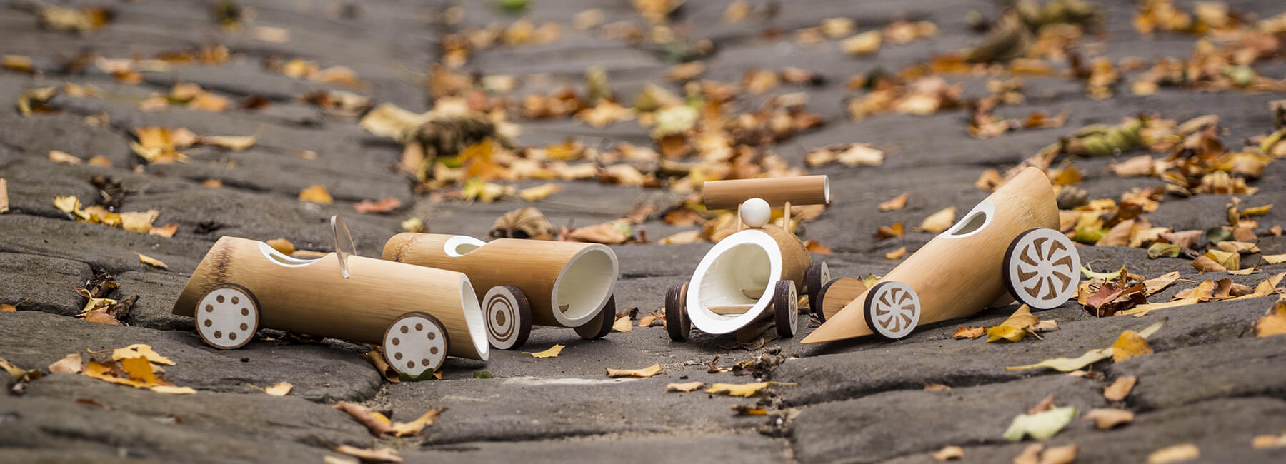 Машинки из бамбука, фото 1