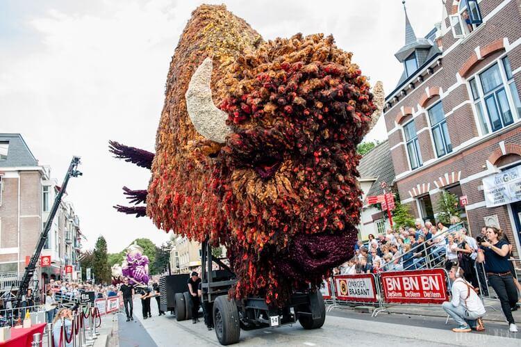 Цветочный парад Корсо Зюндерт, фото 13