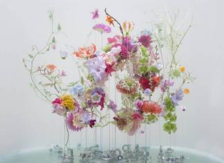 Неземная красота цветов, плавающих, как балерины под водой