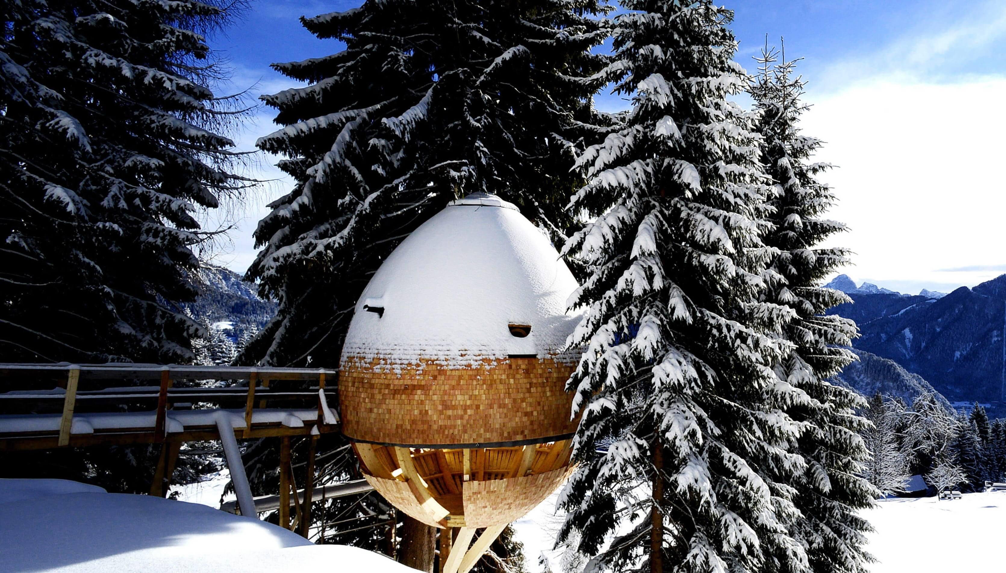 Яйцеобразный дом на дереве, фото 1