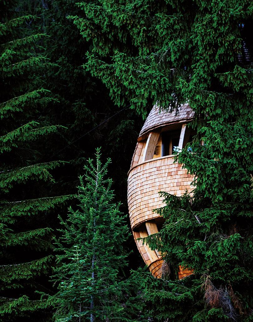 Яйцеобразный дом на дереве, фото 11