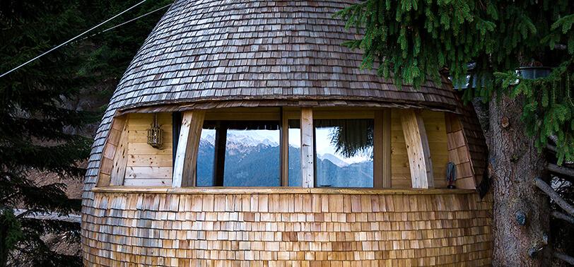 Яйцеобразный дом на дереве, фото 3