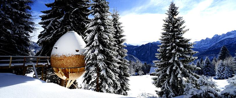 Яйцеобразный дом на дереве, фото 5
