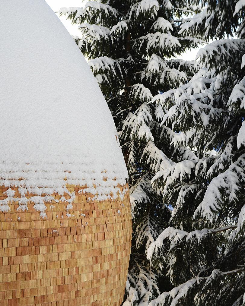 Яйцеобразный дом на дереве, фото 6