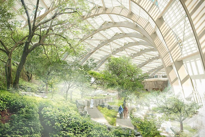 Оманский ботанический сад, фото 2