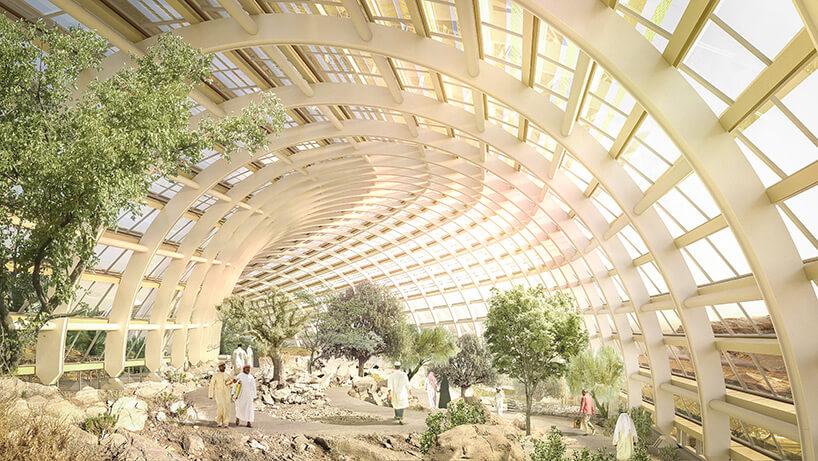 Оманский ботанический сад, фото 5