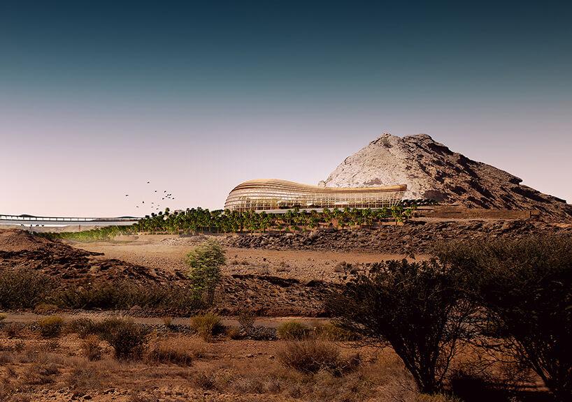 Оманский ботанический сад, фото 1