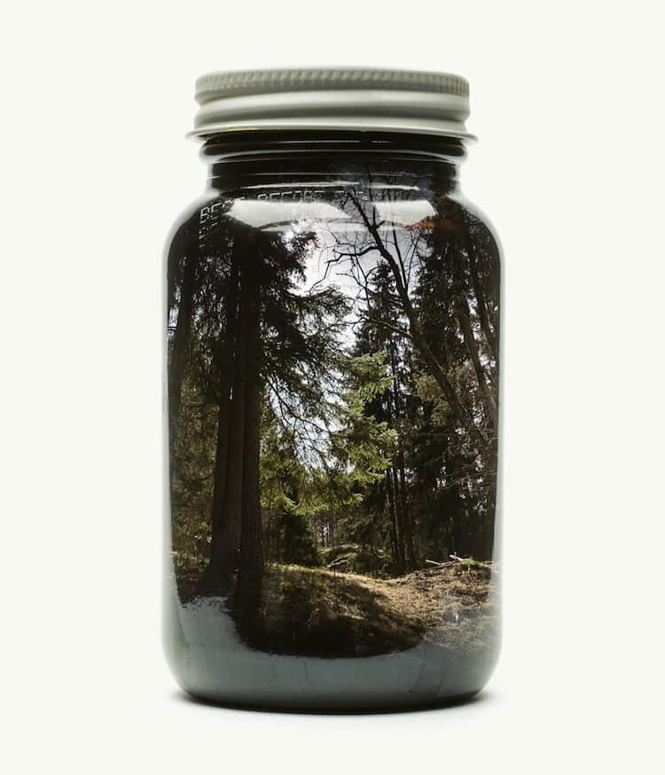Фотографии природы в стекляных банках, фото 3