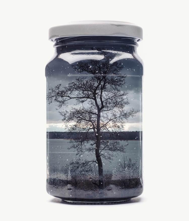 Фотографии природы в стекляных банках, фото 4
