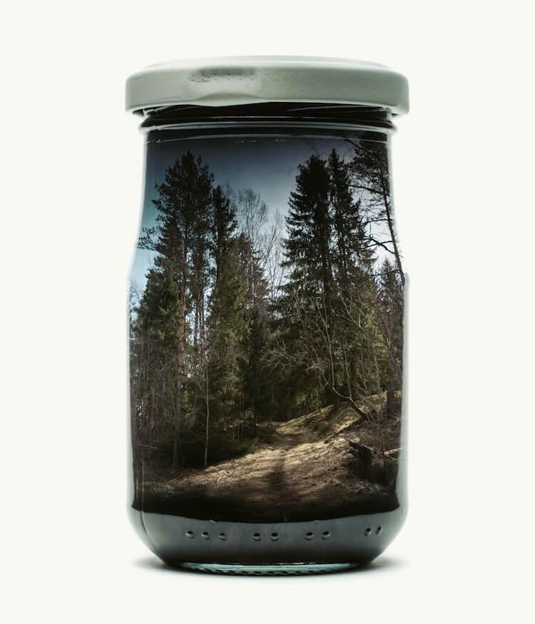 Фотографии природы в стекляных банках, фото 5