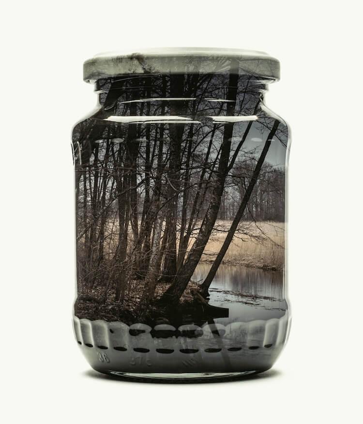 Фотографии природы в стекляных банках, фото 7
